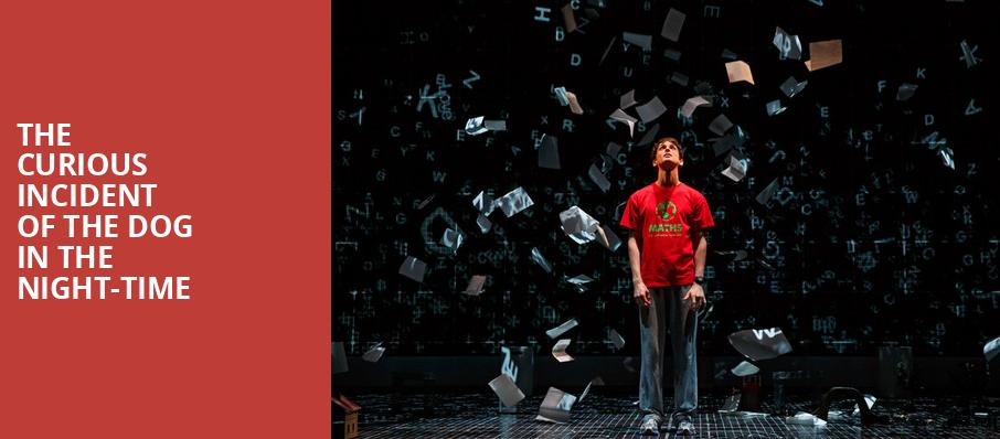 The Curious Incident of the Dog in the Night Time, Princess of Wales Theatre, Toronto