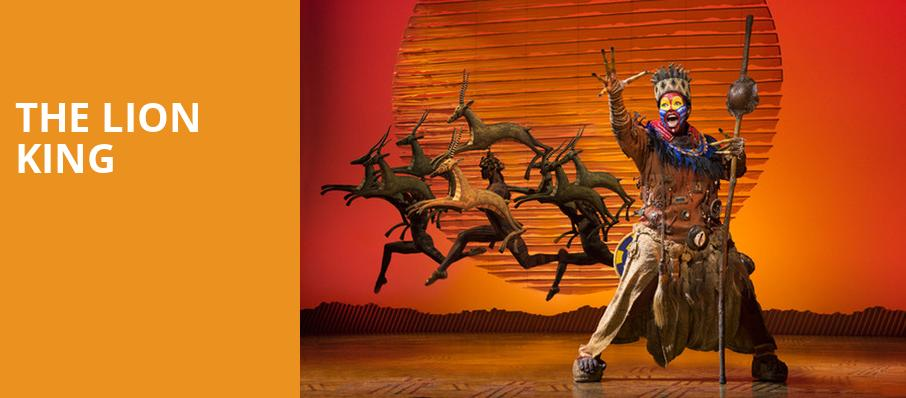 The Lion King, Princess of Wales Theatre, Toronto